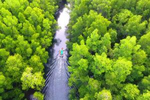 Découvrez les chutes d'eau Batanta en Indonésie