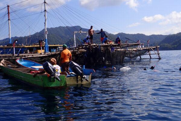 croisière plongée à Triton Bay