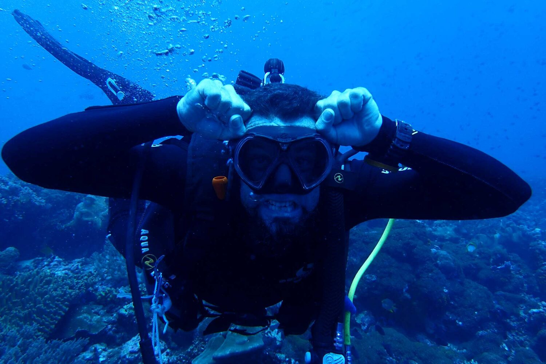 diving banda sea hammerhead sharks