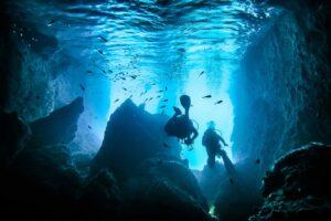Hammerhead Shark Diving Plongée sous-marine en Indonésie