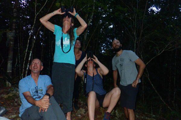 cruisingrajaampat paradisebirds