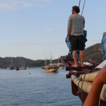 pinisi cruising indonesia labuan bajo freedom