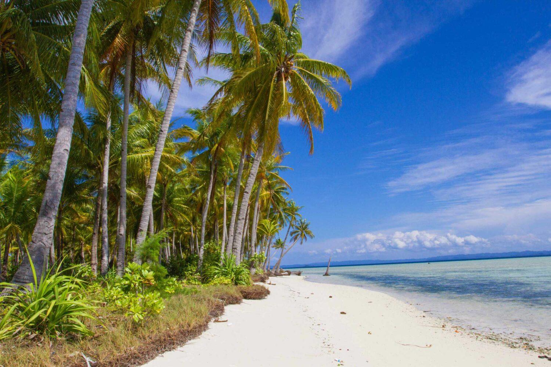 indonesian island cruise Croisière en Indonésie