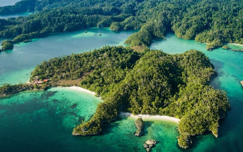 triton bay konjo cruising indonesia island cruise liveaboard scuba diving yacht charter luxury package whale shark raja ampat misool halmahera komodo hammerhead banda sea