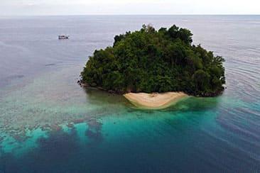liveaboard indonesia konjo cruising island cruise scuba diving yacht charter luxury package whale shark triton bay raja ampat misool halmahera komodo hammerhead banda sea